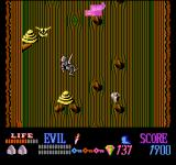 Wizards & Warriors NES You take damage if you fall too far in this game.