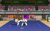 Budokan: The Martial Spirit DOS Your first match at the tournament