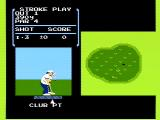 Golf NES On the green