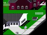 Paperboy NES Customer houses are colored white