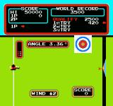 Track & Field NES Hitting the target