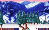 Winter Olympics: Lillehammer '94 DOS Those trees will kill you.