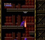 Batman: The Video Game NES Stage 2-3: Those little trapdoors release walking bombs which can be a good source of items if you punch them quickly enough.