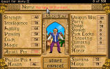 Quest for Glory II: Trial by Fire Windows Hero Screen