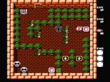 Adventures of Lolo 3 NES This level involves a lot of pushing dragons and turning them into large white balls