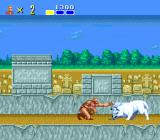Altered Beast TurboGrafx-16 A two-headed wolf attacks