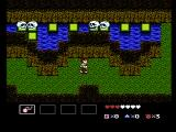 StarTropics NES Skulls impede your progress