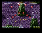Battle Squadron Amiga More weird enemies