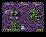 Battle Squadron Amiga Fight against end level boss