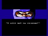 Ninja Gaiden NES The end of the opening sequence