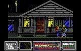 Back to the Future Part II DOS Level 3: Side-scrolling beat-em-up sequence in a hostile 1985.