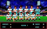 Rick Davis's World Trophy Soccer DOS Team select
