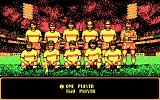 Rick Davis's World Trophy Soccer DOS Player select (CGA)