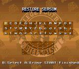 Bill Walsh College Football  SNES Password screen