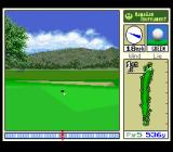True Golf Classics: Waialae Country Club SNES The ball is on the green