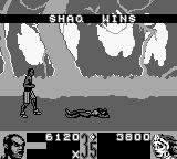 Shaq Fu Game Boy ... brings defeat.