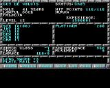 Pools of Darkness Amiga View character