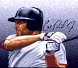 Cal Ripken Jr. Baseball SNES Cal Ripken Jr. himself