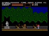 Castlevania NES The first level