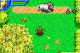 Over the Hedge Game Boy Advance I can dash to defeat dogs.