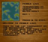 Bass Masters Classic: Pro Edition SNES Overview of a lake