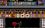 World Fighting Championship Atari ST A direct hit!