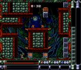 Troddlers SNES This level has two Troddler doors.
