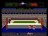 Tag Team Wrestling NES Fell out of the ring