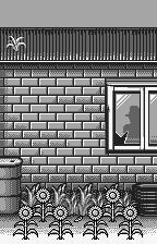 Tane o Maku Tori WonderSwan Victory... but who is that in the window?