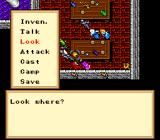 Ultima VI: The False Prophet SNES You can look at objects