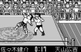 Shin Nihon Pro Wrestling Toukon Retsuden WonderSwan That expression says it all: oof.