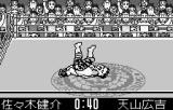 Shin Nihon Pro Wrestling Toukon Retsuden WonderSwan Not really sure whose idea _this_ was.