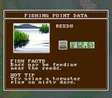 Super Black Bass SNES Fishing point data