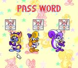 Tiny Toon Adventures: Wacky Sports Challenge SNES Password screen