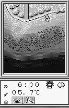 Fishing Freaks: BassRise for WonderSwan WonderSwan That looks like a good depth to cast.