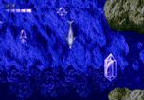 Ecco the Dolphin Genesis Swimming down to the bottom, to discover a crystal