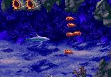 Ecco: The Tides of Time Genesis Colored fishes