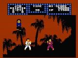 Karate Champ NES One of nine locations fights take place at