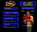 Boxing Legends of the Ring SNES Create-A-Boxer; modifying general attributes.