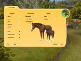 Let's Ride! Friends Forever Windows Configure your horse's characteristics