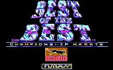 Best of the Best Championship Karate DOS Title screen (EGA)
