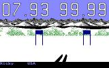 The Games: Winter Edition Amiga Down Hill - First person view while you ski.