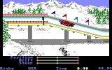 The Games: Winter Edition Amiga Luge.