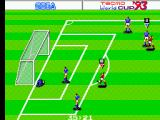Tecmo World Cup '93 SEGA Master System ... And it's a goal. My goal keeper is not happy.