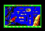 Peter Pan Amstrad CPC I will need to canoe about, gathering items, without getting caught by the Indian.