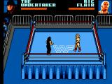 WWF Wrestlemania: Steel Cage Challenge SEGA Master System The bell rings and the match starts