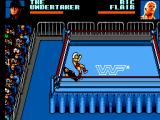 WWF Wrestlemania: Steel Cage Challenge SEGA Master System I am down early and Ric Flair is taking full advantage.