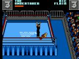 WWF Wrestlemania: Steel Cage Challenge SEGA Master System I won the rematch after pinning my opponent down for 3 seconds.
