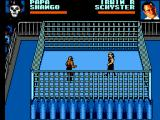 WWF Wrestlemania: Steel Cage Challenge SEGA Master System Start of a Steel Cage Match. No getting out of this one.