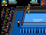WWF Wrestlemania: Steel Cage Challenge SEGA Master System OK this is going to hurt.